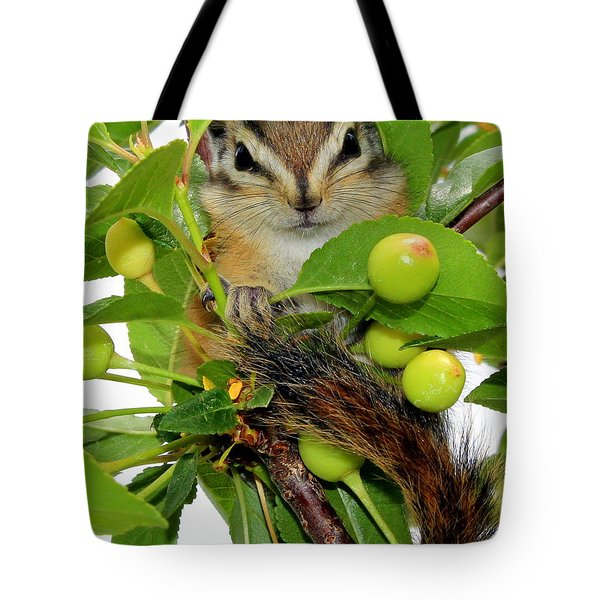 Tote Bag featuring the photograph Chip Or Dale by Barbara Chichester