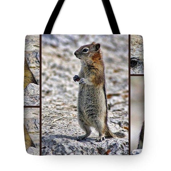 Chipmunk Collage Tote Bag by Lynn Bolt