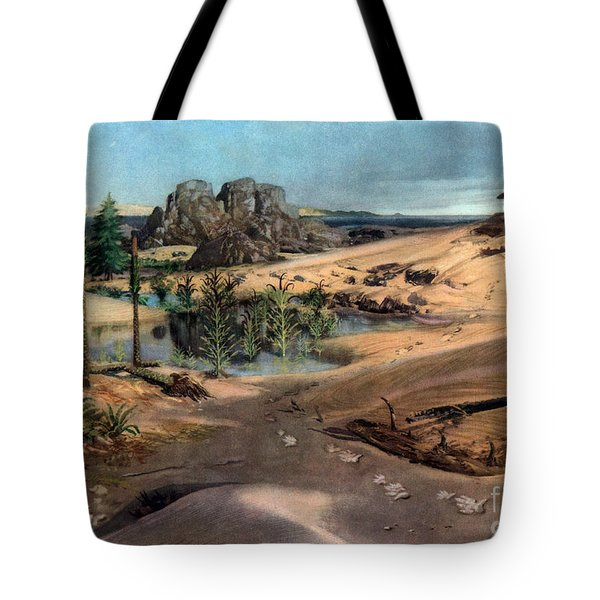 Chirotherium In Lower Triassic Landscape Tote Bag by Science Source
