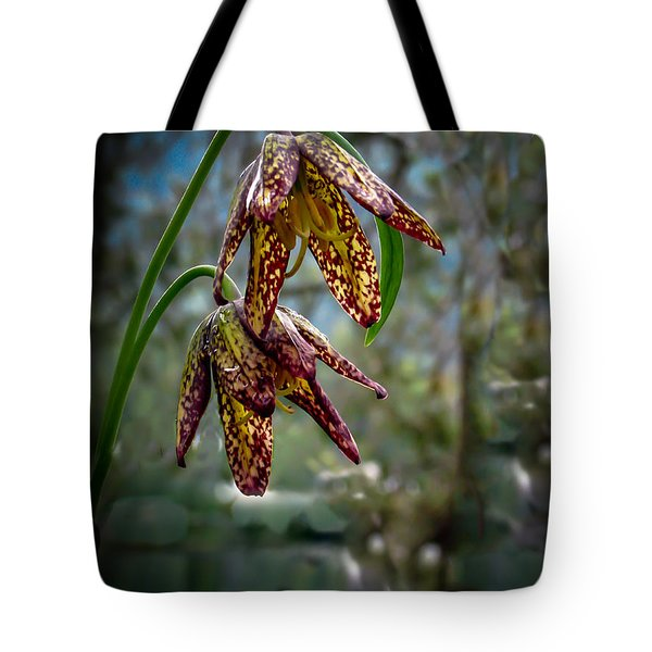 Chocolate Lily Tote Bag by Robert Bales