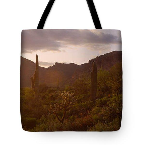 Cholla Cactus In A Field, Phoenix Tote Bag