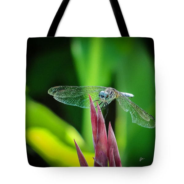 Chomped Wing Squared Tote Bag by TK Goforth