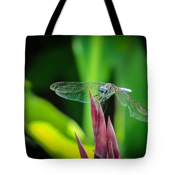 Chomped Wing Tote Bag by TK Goforth
