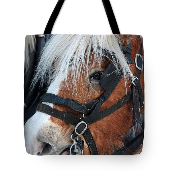 Tote Bag featuring the photograph Chomping On The Bit by Alyce Taylor
