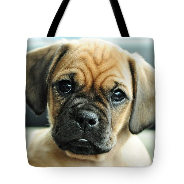 Chooch Tote Bag by Lisa Phillips