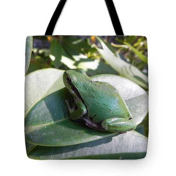 Tote Bag featuring the photograph Chorus Frog On A Rhodo by Cheryl Hoyle