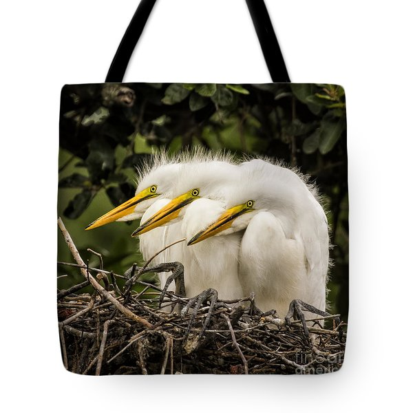 Chow Line Tote Bag
