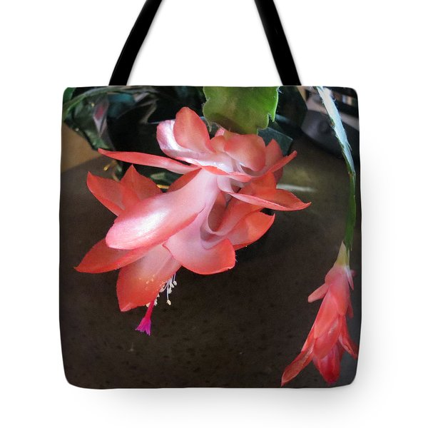 Christmas Cactus Bloom Tote Bag