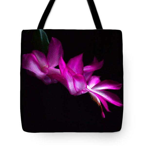 Christmas Cactus Blossom Tote Bag