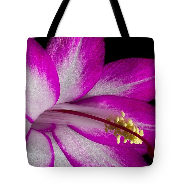 Tote Bag featuring the photograph Christmas Cactus by Ron Pate