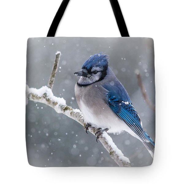 Christmas Card Bluejay Tote Bag