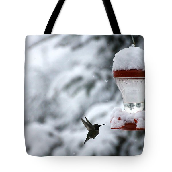 Christmas Hummingbird Tote Bag by Katie Wing Vigil