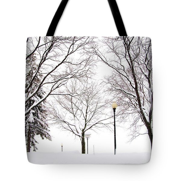 Christmas In Skaneateles Tote Bag by Margie Amberge