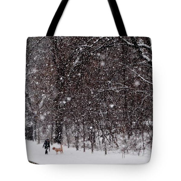 Tote Bag featuring the photograph Christmas Walk by Jacqueline M Lewis