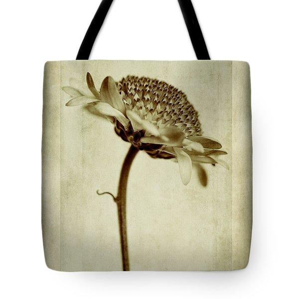 Chrysanthemum In Sepia Tote Bag by John Edwards