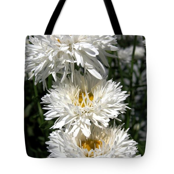 Tote Bag featuring the photograph Chrysanthemum Named Crazy Daisy by J McCombie