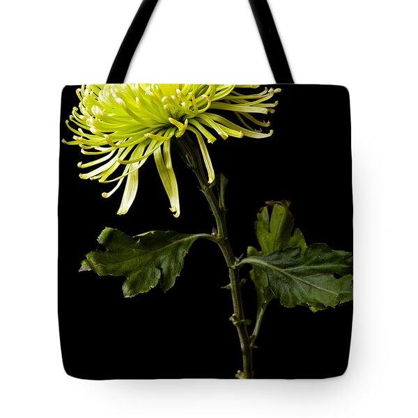 Tote Bag featuring the photograph Chrysanthemum by Sennie Pierson