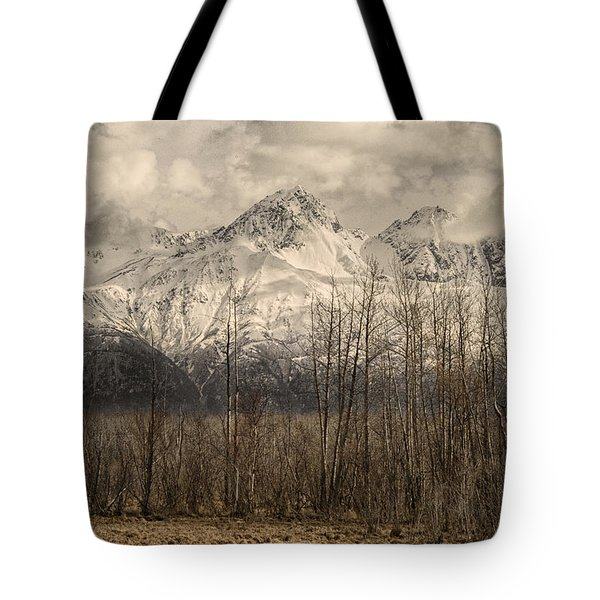 Chugach Mountains In Storm Tote Bag