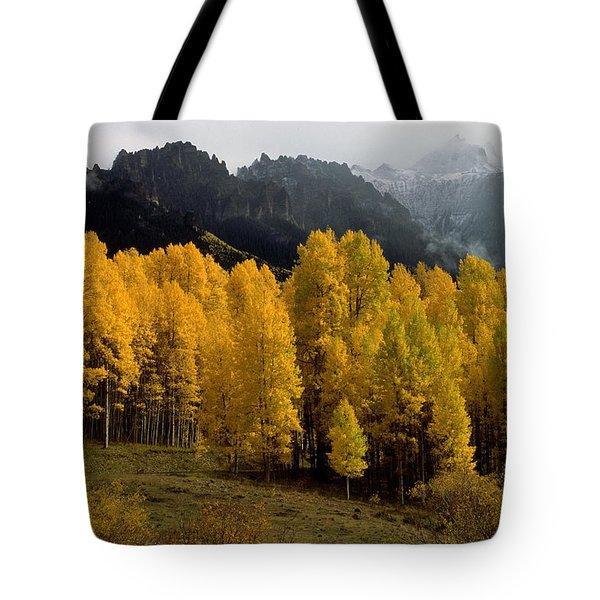 Cimarron Forks Tote Bag