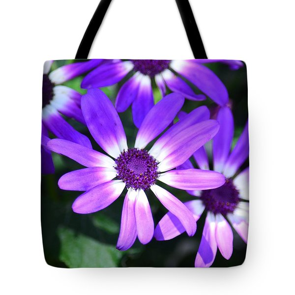 Cineraria Tote Bag by Maria Urso