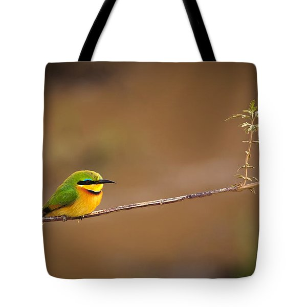 Cinnamon-chested Bee-eater Tote Bag by Adam Romanowicz