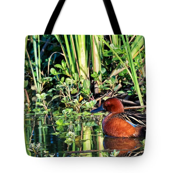 Cinnamon Teal And Dragonfly Tote Bag