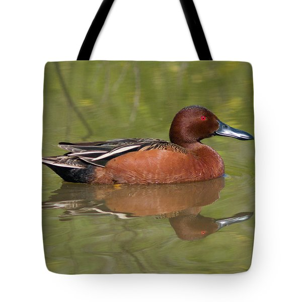 Cinnamon Teal Tote Bag by Doug Herr