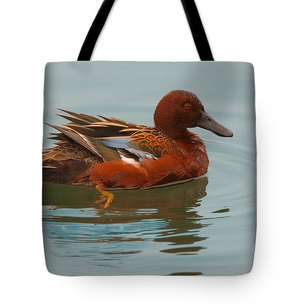 Tote Bag featuring the photograph Cinnamon Teal by Ram Vasudev