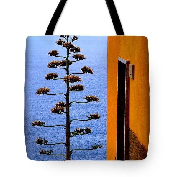 Cinque Terre View Tote Bag