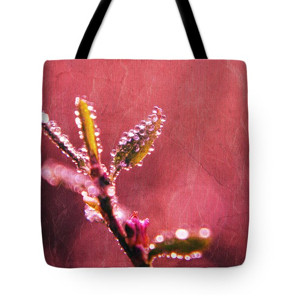 Circles From Nature - C33st04a Tote Bag by Variance Collections