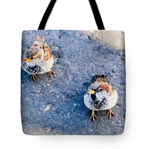 City Beggars - Featured 3 Tote Bag by Alexander Senin