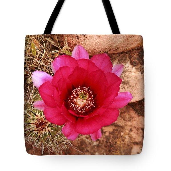 Tote Bag featuring the photograph Claret Cup Cactus On Red Rock In Sedona by Alan Vance Ley