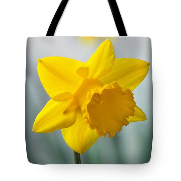Classic Spring Daffodil Tote Bag by Terence Davis