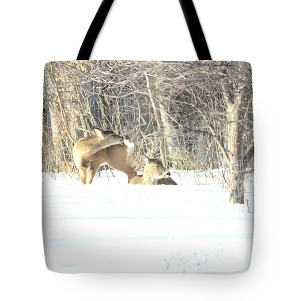 Cleaning Cockleburs On It's Tail Tote Bag by Dacia Doroff