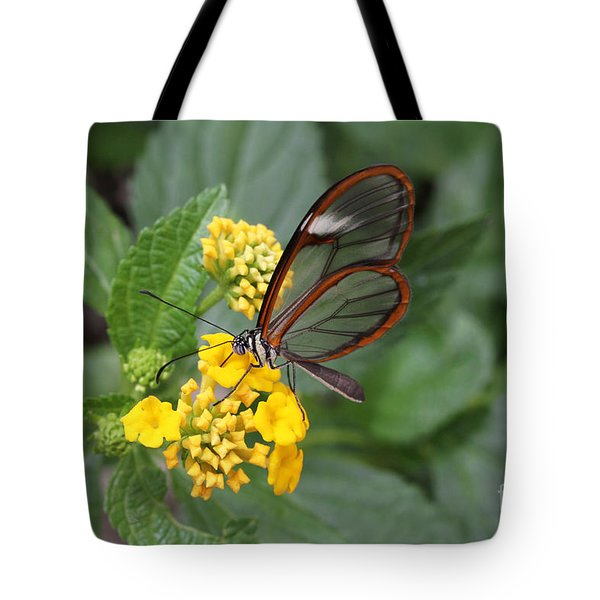 Clearwing Butterfly Tote Bag