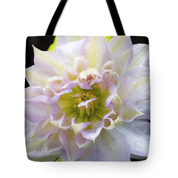 Tote Bag featuring the photograph Clematis 'belle Of Woking' by Richard J Thompson