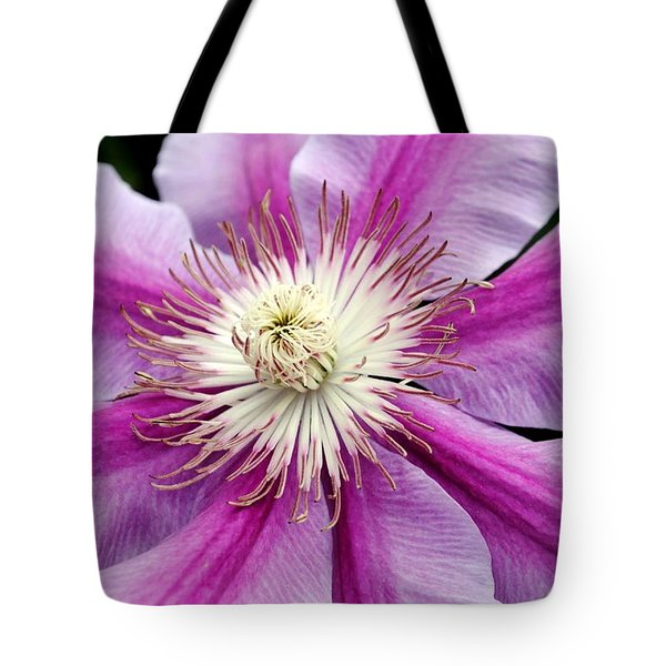 Tote Bag featuring the photograph Clematis by Kelly Nowak