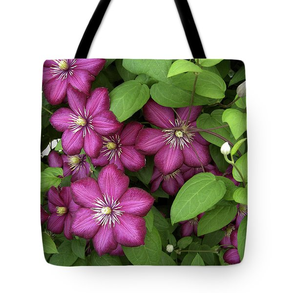 Tote Bag featuring the photograph Clematis by Penny Lisowski