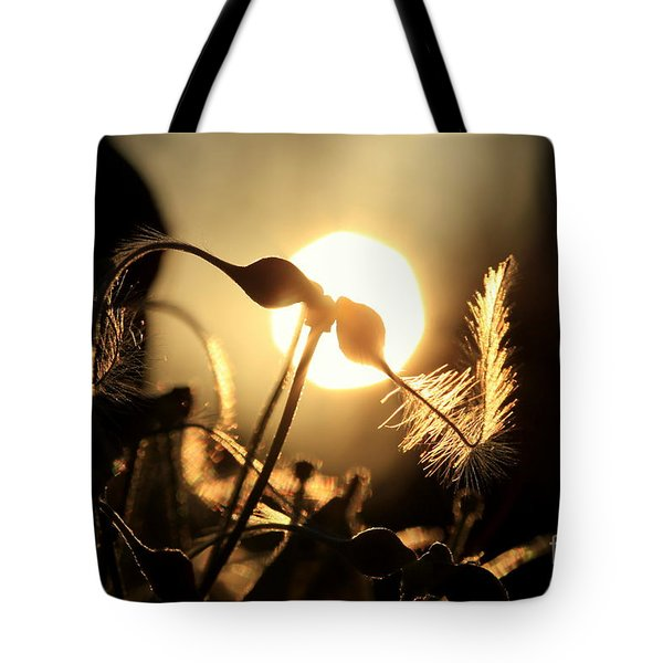 Clematis - Sunset Tote Bag by Kenny Glotfelty