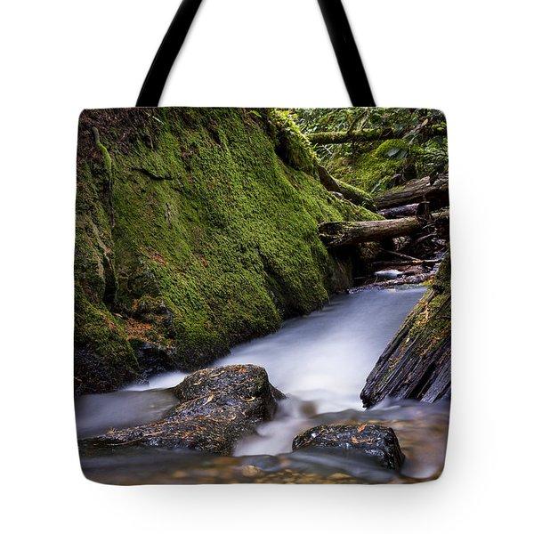Cliff Gilker Park Tote Bag