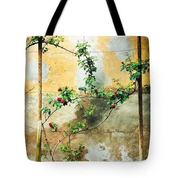 Tote Bag featuring the photograph Climbing Rose Plant by Silvia Ganora