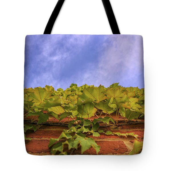 Climbing The Walls - Ivy - Vines - Brick Wall Tote Bag by Jason Politte