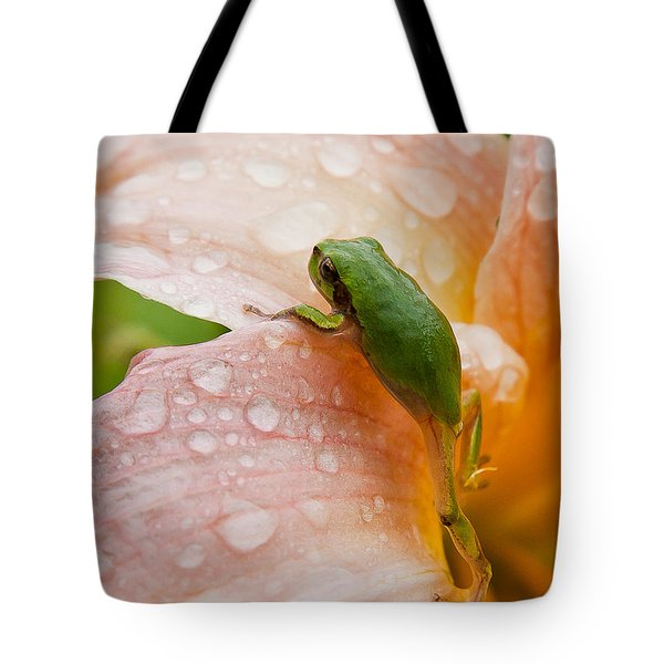 Climbing Up Tote Bag