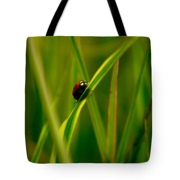 Climbing Up The Long Green Road Tote Bag by Jeff Swan