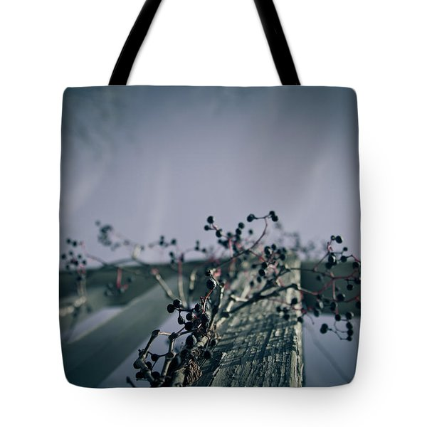 Cling To You Tote Bag by Shane Holsclaw