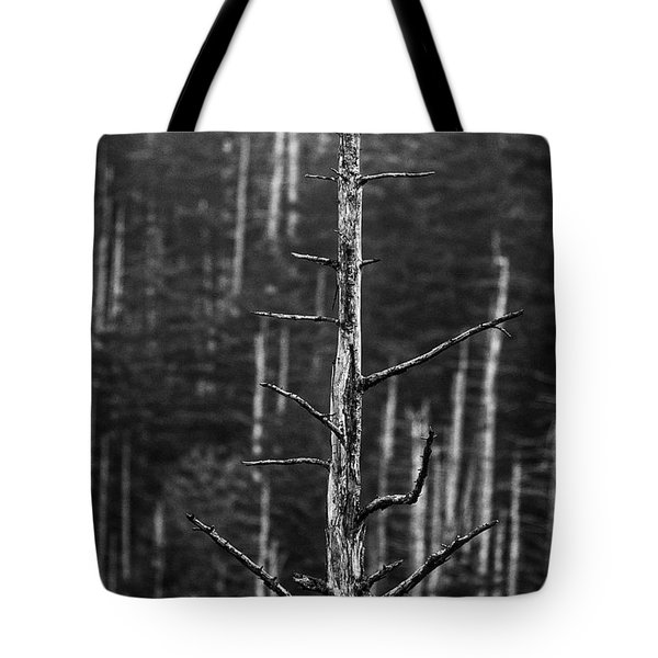 Clingman's Dome Skeletons Tote Bag by Andy Crawford