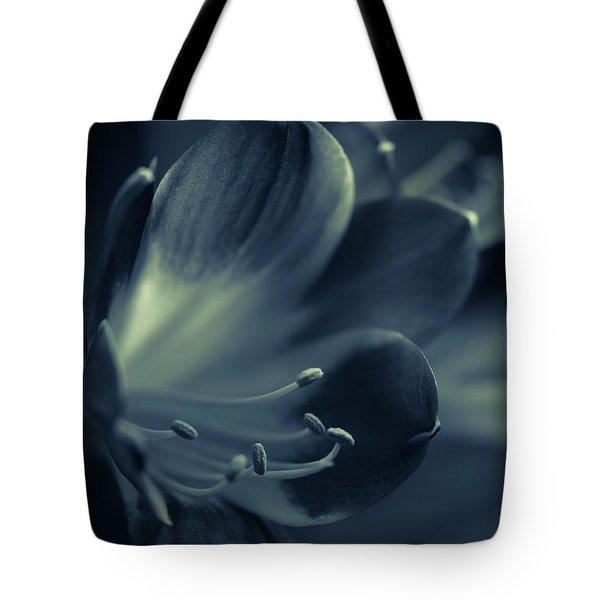 Clivia Miniata II Tote Bag by Andreas Levi