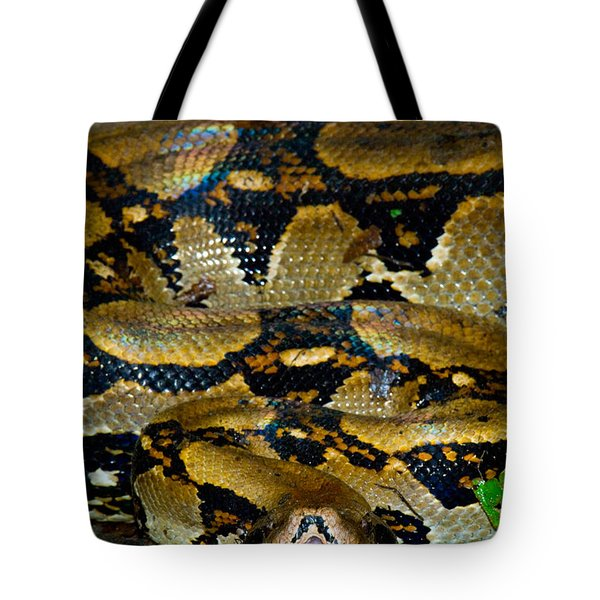 Close-up Of A Boa Constrictor, Arenal Tote Bag