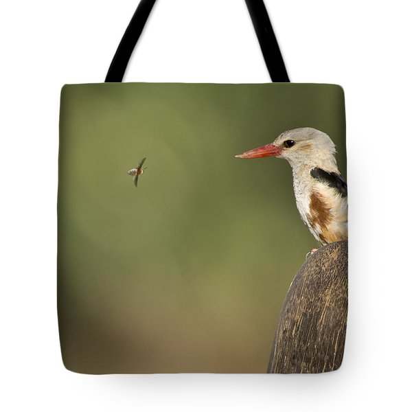 Close-up Of A Grey-headed Kingfisher Tote Bag