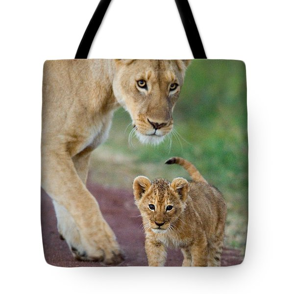 Close-up Of A Lioness And Her Cub Tote Bag